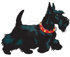scottie dog graphic