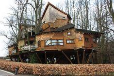 Esto es una mansión en un árbol. Impactante.  En www.edanpergolas.com construimos tus sueños.