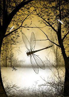 Fantasy Art – Tree Art – Dragonfly Art – Digital Painting – Dragonfly – Trees and Dragonflies - Top 99 Pencil Drawings Dragonfly Drawing, Dragonfly Painting, Dragonfly Art, Small Dragonfly Tattoo, Dragonfly Quotes, Art Et Nature, Autumn Art, Tree Art, Fine Art America