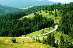 Landscape in Bucovina by Stefan Andronache on CameraCanon EOS LensCanon mm Focal mm Shutter s CategoryLandscapes days ago TakenJune 2007 True Beauty, Romania, Places To See, Cool Photos, Vineyard, Beautiful Places, Mountains, Landscape, History