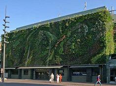 Vegetable facade, Les Halles, Avignon - a. Market I must visit. Saturday is best.