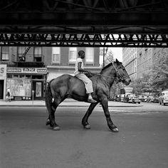 Brooklyn, NYC, 1950's