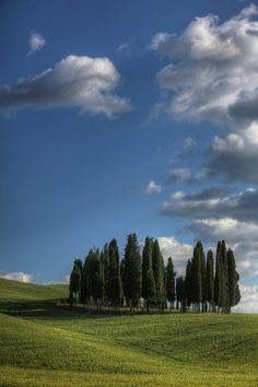 Under the Tuscany(Italy) Sun by www.ciaotours.com
