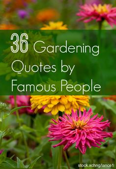 Garden Quotes: Best Gardening Quotes by Famous People | INSTALL-IT-DIRECT