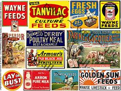 Rusty Metal Signs, Farm Tin Signs, Ephemera STICKERS, Dairy Cows, Fresh Eggs Sign, Country Store Signs, Scrapbook Collage, Clip Art, 209a by retrowallart on Etsy