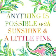 Any Lilly girl knows this is true!  #ilovelilly #sunshine #pink #lillylove #lillypulitzer #elephants #buymelilly #resort365 #lillygirl