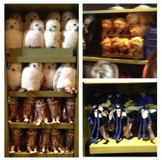 At the Magical Menagerie in Diagon Alley you can purchase a variety of plush toys including Crookshanks, Fang, Buckbeak, Fluffy and Scabbers, cats of every color, ravens, sleek black rats, and fat white rabbits that transform to and from a silk top hat.