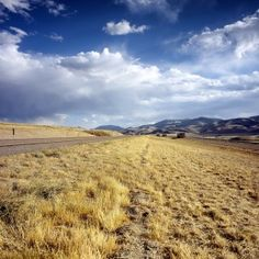 Buying Land for the Milk and Honey - Investing in Land