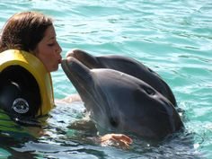 Dolphin Kisses at Dolphin Encounters, Nassau Bahamas