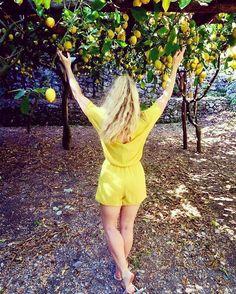 #Amalfi #Lemon #Energy & #Power #organicfarm  #LemonMind #lemontour #whenlemongivesyoulife #amalficoast #wellness #happiness