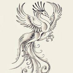 tattoo #tattoos #tatuaggio #tattoosketch #fenice #sketch #art #ink ...