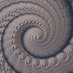 Spiral fractal.