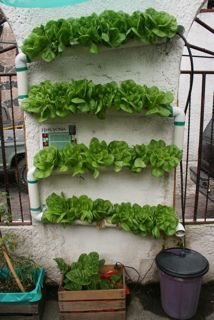 Hydroponic Vertical Garden At Sembradores Urbanos   Appropedia: The  Sustainability Wiki