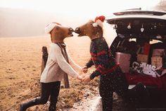 BE BRIGHT PHOTOGRAPHY horse, mask, x-mas, kiss, volvo, car, #horse