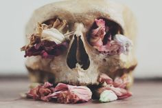 Out of death comes life...