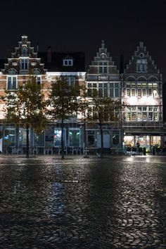 Gand, Belgia Travel Photography, Mansions, House Styles, Home Decor, Mansion Houses, Homemade Home Decor, Manor Houses, Fancy Houses, Decoration Home