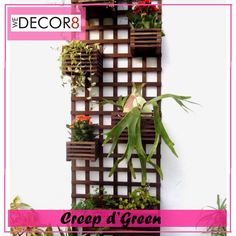 Creep d'Green Squarely-designed long wooden trellis with creepers or small plants scattered vertically. #wedecor8 #Decorateyourbalcony #Feelthegreen #letsgreenyourbalcony  BOOK YOUR ORDERS NOW.
