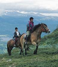 Horsebackriding in the Norwegian mountains