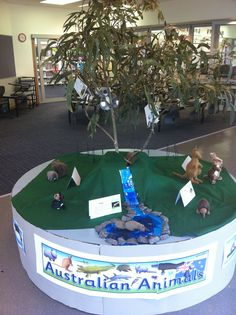Australian Animals classroom display