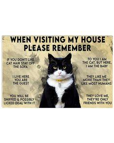 Funny Cats, Funny Animals, Cute Animals, Funny Cat Quotes, Cat Love Quotes, Crazy Cat Lady, Crazy Cats, Cat Posters, Cat Life