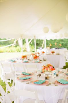 White tent, white chairs, white tablecloths. Colored flowers, plates, and napkins. The only option for plates is white though, unless we do goodwill or borrow plates (each table has different plates)?