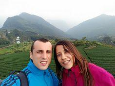 Tea Plantation | Tea Journey | Ali Mountain | Taiwan