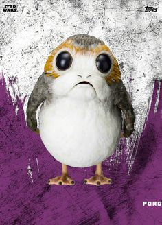 The lonely Porg is lookin' for love-and a home!!