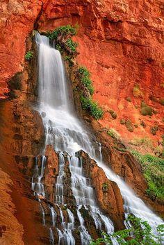 Waterfall, Vasey's Paradise - Grand Canyon National Park, Arizona