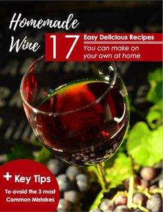 Hypothetically, creating wines are extremely simple. Yeast infection fits grapes juices inside a place enabling Homemade Wine Making, Homemade Wine Recipes, Making Wine At Home, Homemade Alcohol, Homemade Liquor, Make Your Own Wine, How To Make Wine, Wine And Liquor, Wine And Beer