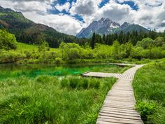 Slovenia is one of the best countries to visit in Europe. Let's have a look at top things to do in Slovenia. Best Countries To Visit, Cool Places To Visit, Places To Travel, Bon Plan Voyage, Destinations, Seen, Get Outdoors, Ultimate Travel, Nature Reserve