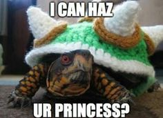Crocheted Turtle Costumes - Turn Your Pet Turtle into King Koopa with this Knitting Tutorial (GALLERY) Bowser Costume, Mario Costume, Turtle Sweaters, King Koopa, Funny Animals, Cute Animals, Animal Fun, Crochet Turtle, Pet Turtle