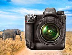 Nikon, Binoculars, Photography, Pictures, News, Camera, Photograph, Fotografie, Fotografia