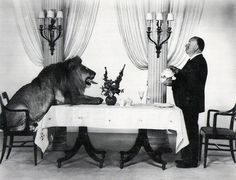 A photgraph of Alfred HItchcock serving tea to the MGM lion