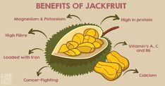 Jackfruit has grown in popularity for good reason! This sweet, delicious, exotic fruit is packed with many different nutrients and multiple health-boosting benefits. Jackfruit Benefits, Cancer Fighting Fruits, Vitamine B12, Fruit Love, Kinds Of Diseases, Magnesium, Incredible Edibles, Exotic Fruit, Pulled Pork