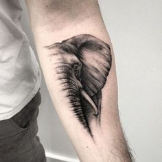 Realistic tattoo of the elephant head made on the arm