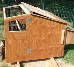 Inside Chicken Coops - Bing images