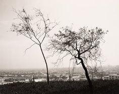 Robert Adams - 1983, On Signal Hill, overlooking Long Beach, California