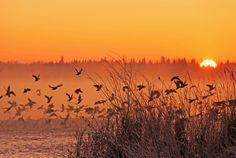 Gull Lake, Michigan