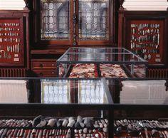 Vue des tables-vitrines de la salle Piette, récemment restaurée. © RMN-GP/MAN L. Hamon