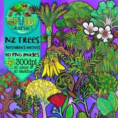 This set contains a selection of nature themed frames and page footers – perfect for adding an earthy whimsical touch to your resources! This set contains 24 images colour and 12 blackline) as high quality dpi) PNGs with transparent backgrounds. Manuka Tree, Kauri Tree, Tree Fern, Bee Do, Nz Art, Tree Images, Kiwiana, Blooming Flowers, Fiber Art