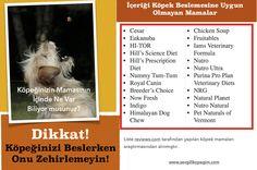 Cesar Chicken, Hills Science Diet