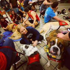 During finals season, Angel Paws Waco makes a stop at Baylor to help de-stress students!