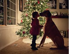 Christmas Kiss - Dog Christmas Cards Ideas For Anyone Who's Obsessed with Their Pup - Photos