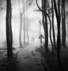 Hengki Lee is a photographer from Jakarta, Indonesia. The inspiration for his work comes from poetry, movies and books he reads. The concept of his works are simply about curiosity, dreams, poetry and emotion.