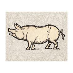 Vintage Pig Antique Piggy Illustration Gallery Wrapped Canvas