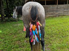 Colorburst Feathered Equine Tail Swag - American Indian Style Equine Ornament Apache Native American, Native American Proverb, Native American Symbols, Native American Quotes, Native American History, Indian Tribes, Native Indian, Native Art, New Mustang