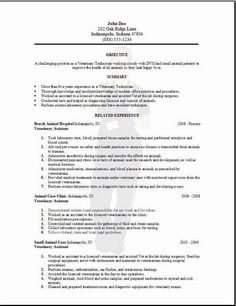 Veterinary Resume Resume Template For Fresher  10 Free Word Excel Pdf Format