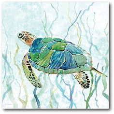 Sea Turtle Swim II Wrapped Canvas