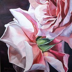 $1,950. 76 x 76 cm. Deep Edge Canvas (3.5cm) Acrylics on canvas with oil glaze.A duo of dusty pink roses.  These are lush, full blownbeauties