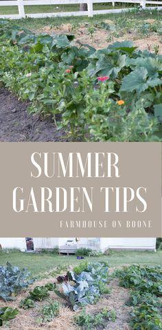 Vegetable Gardening For Beginners Summer vegetable garden tips Vegetable Garden Planner, Raised Vegetable Gardens, Vegetable Gardening, Organic Vegetables, Growing Vegetables, Vegetables Garden, Veggies, Growing Plants, Gardening For Beginners